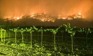 Wildfires in California, USA - 10 Oct 2017Mandatory Credit: Photo by Stuart Palley/ZUMA Wire/REX/Shutterstock (9131672b) The Atlas Fire burns east of Woodley Canyon Rd near vineyards late Tuesday evening in Napa County Wildfires in California, USA - 10 Oct 2017 The Atlas Fire burns in Napa and Solano Counties Monday evening. The fire was 3% contained and had burned 25,000 acres. Multiple structures were destroyed as crews battled strong winds and tinder dry vegetation after multiple fires burned in the area.