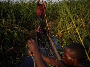 Alphonsi Ndoma and Guylain Mudjombe check their nets and fish in marshes on the Congo river near Kinshasa