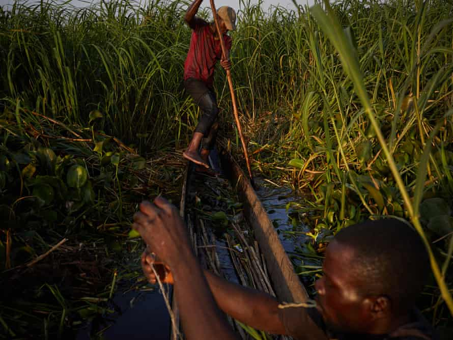 Alphonsi Ndoma and Guylain Mudjombe check their nets and fish in marshes on the Congo river near Kinshasa