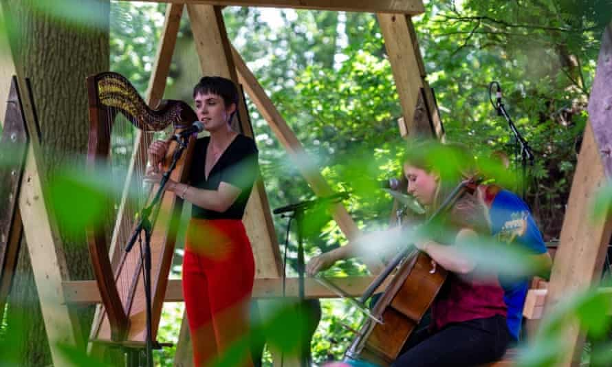 Musicians at Timber International Forest Festival.