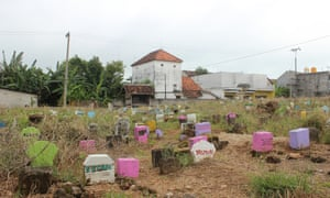 Suko Cemetery, Lamongan, East Java, where the human remains found in the old warships are allegedly buried.