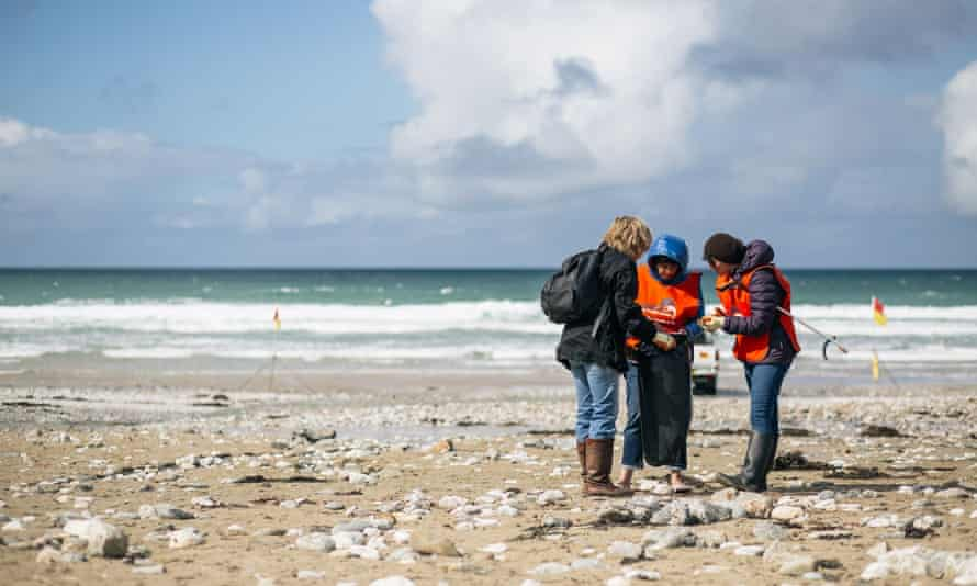 Marine Conservation Society volunteers clean a beach