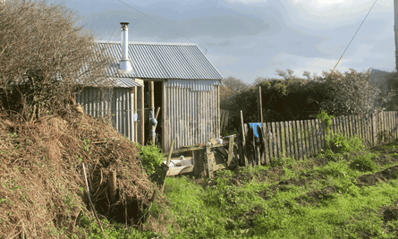 'In places the book reads as a lament for the economy of Cornwall' … Catrina Davies's shed.