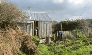 The shed where Catrina Davies lives in Cornwall.