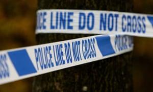 Police tape around tree