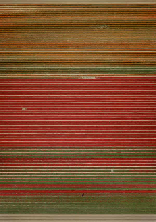 Untitled XVIII, 2015 by Andreas Gursky.