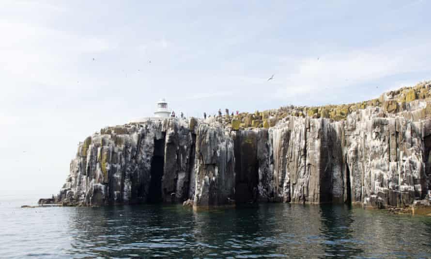 The cliffs of Inner Farne.