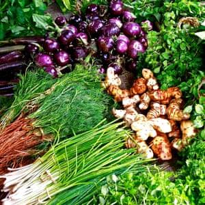 culinary inspiration market produce (herbs)