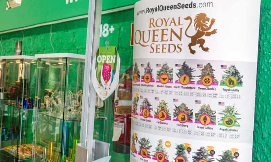 Cannabis seeds and pipes on display in Barcelona.