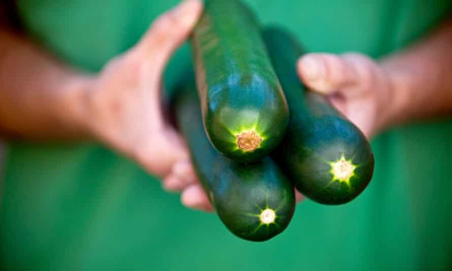 What will you give me for these? Some in-demand courgettes.