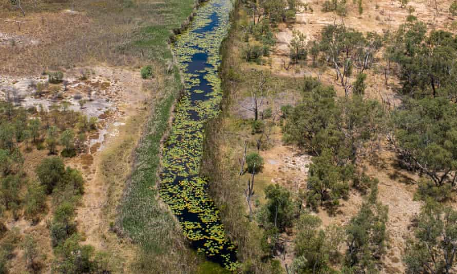 The Doongmabulla Springs near Adani's Carmichael coalmine site with dust visible from land clearing operations