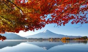 Mount Fuji and maple trees view, Lake Kawaguchiko, Japan.