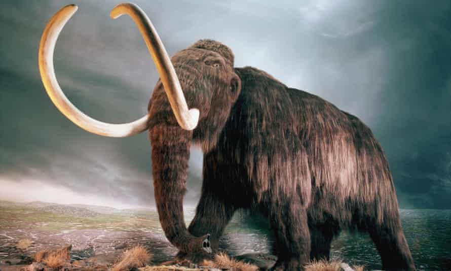 Defrosting the Earth could reveal the first ever entirely breadcrumbed mammoth.