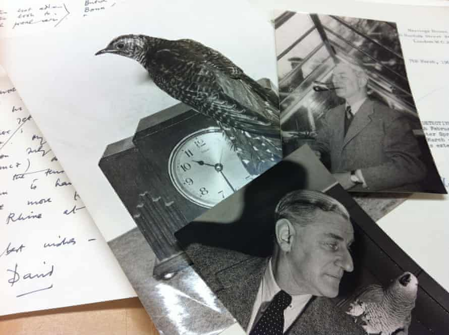 Photos and papers discovered in Maxwell Knight's filing cabinet.