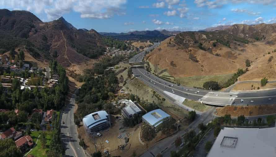 The biggest wildlife crossing in the world will span freeway 101 in Liberty Canyon, Los Angeles.
