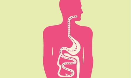 'Good brain health depends on good gut health.'
