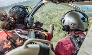 An Indigenous ranger oversees aerial culling in Kakadu national park