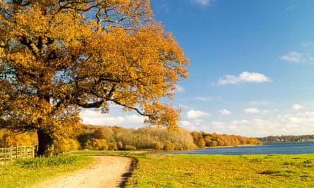 Beautiful autumn fall colours surrounding Rutland Water