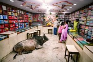 Bull in a Saree Shop, Varanasi, India 2007