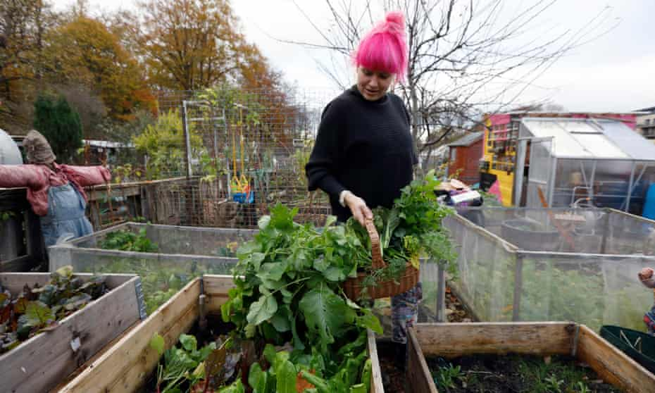 Jen Anderson on her allotment in Pollok Park, Glasgow.