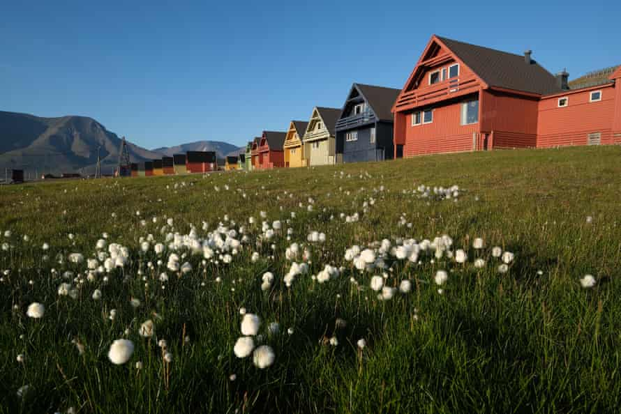 This summer saw a heatwave in the Svalbard archipelago, Longyearbyen, Norway. Global warming has had a dramatic impact on Svalbard, including a rise in average winter temperatures of 10C over the past 30 years, causing disruption to the local ecosystem.