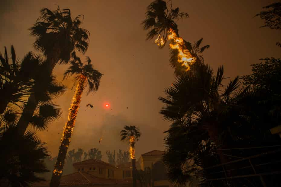 Embers falls from burning palm and the sun is obscured by smoke in Malibu, California, on 9 November.