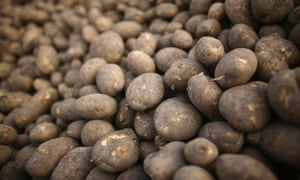 The potato is the second most wasted food in the UK, behind bread.