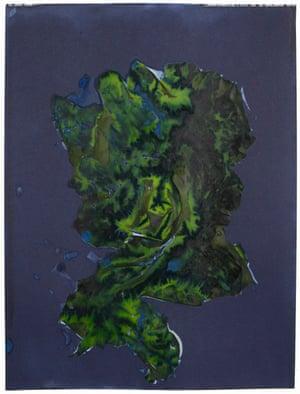 For Anna, Vol. II, Plate 18, 2017 Unique dynamic cyanotype, algae and shoreline debris