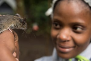 Ana Gledis da Conceição Miranda, a Mozambican biologist working at the Pringle and E.O. Wilson Laboratory in Gorongosa National Park, holds an as-yet unidentified mouse found in the forest of nearby Mount Socone.