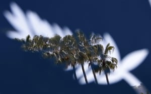 Palm trees are seen through a Palme d'Or symbol metal cutout on the eve of the start of the 68th Cannes Film Festival