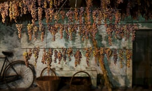 Grapes air-drying in Italy.