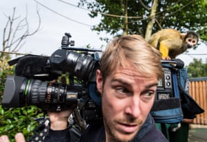 A squirrel monkey checks out the specification of a television camera