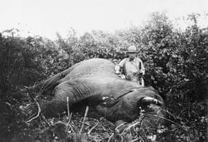 President Theodore Roosevelt poses beside a slain elephant in Kenya's Meru Boma district, 1909.