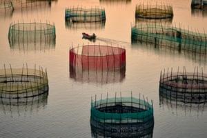 A boat passes fishing nets