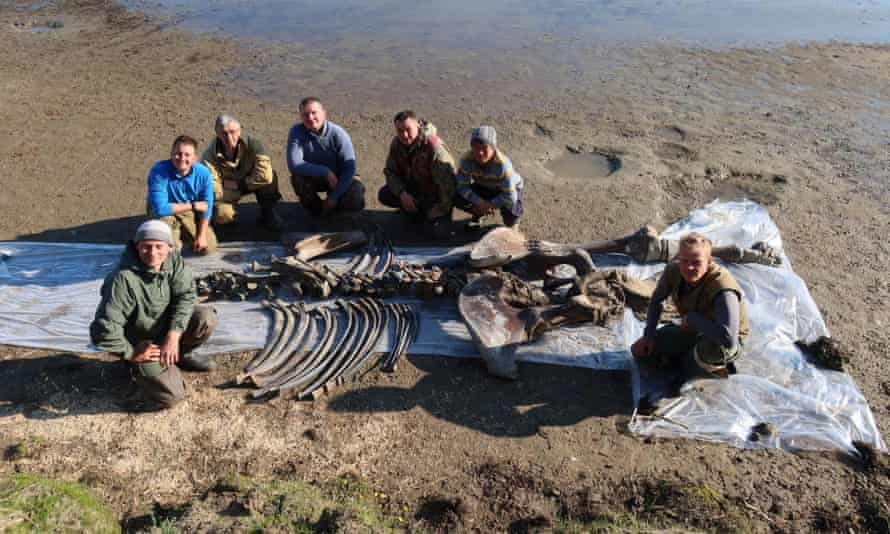 The newly discovered skeleton was found on the Yamal peninsula, in Siberia, Russia.