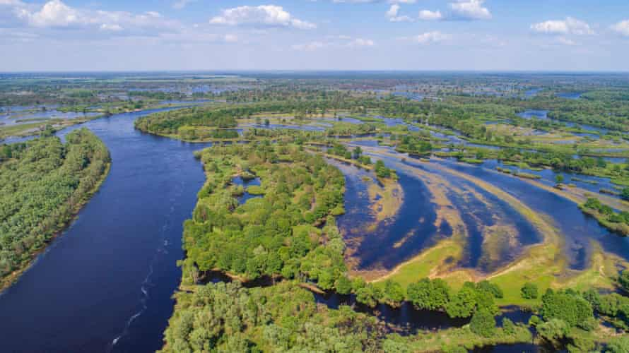 The Pripyat river and its surrounding floodplain meadows, wetlands and oxbow lakes in Polesie, Belarus.