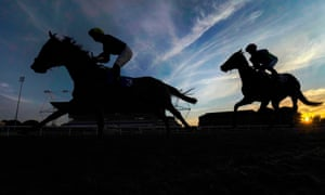 There are fears that many juvenile horses will not find an owner with demand significantly reduced.