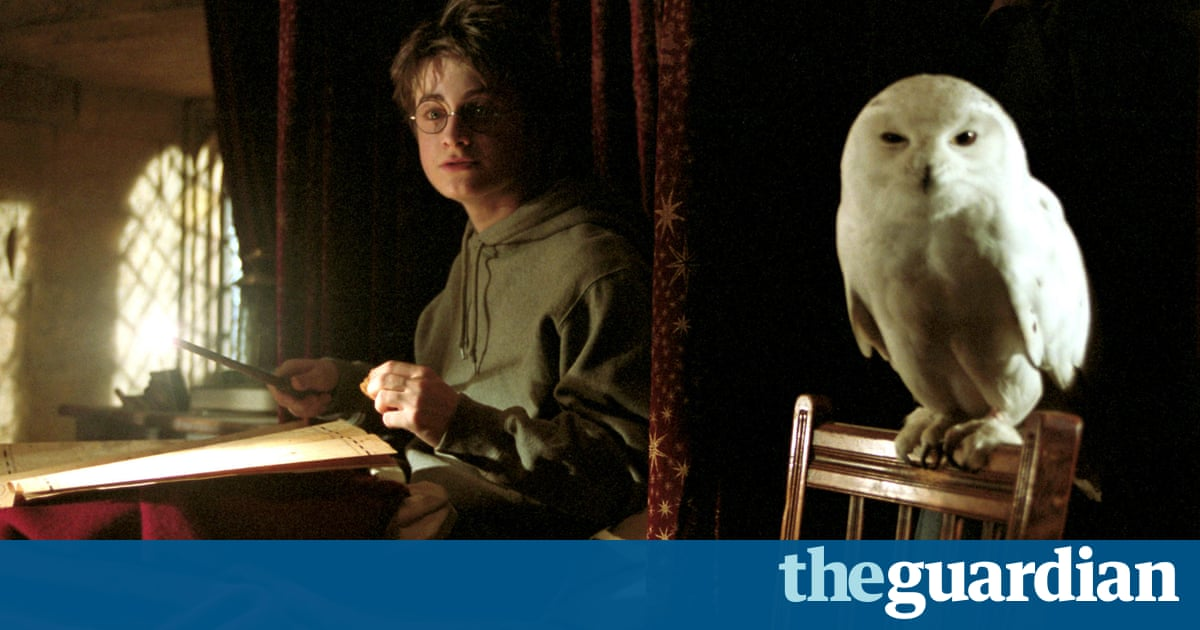 Asia's Harry Potter obsession poses threat to owls