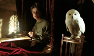 Harry Potter with his owl, Hedwig.