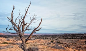 'Wounds of time …' the parched landscape of the American west.