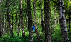 A boy in the wood in Bestwood Country Park, Nottingham that the Wild Things Forest School uses as its classroom