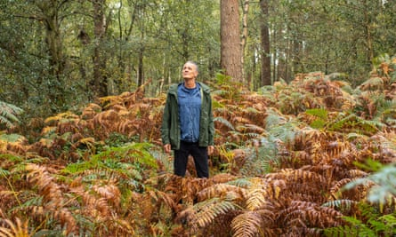 Andrew Anthony walks through the woods of Leith Hill in Surrey.
