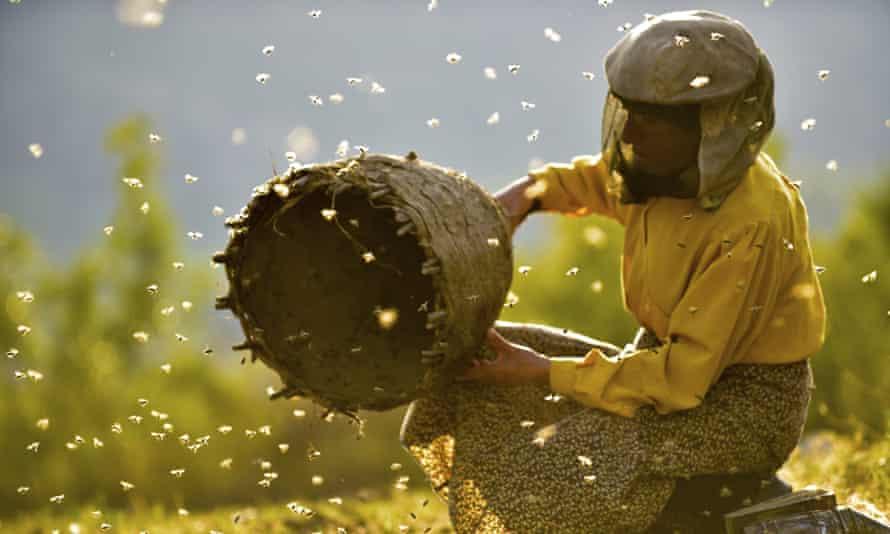 Beekeeper Hatidze Muratova in a scene from Honeyland.