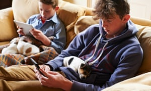 Boys using digital tablet and cell phone with puppies sleeping in laps
