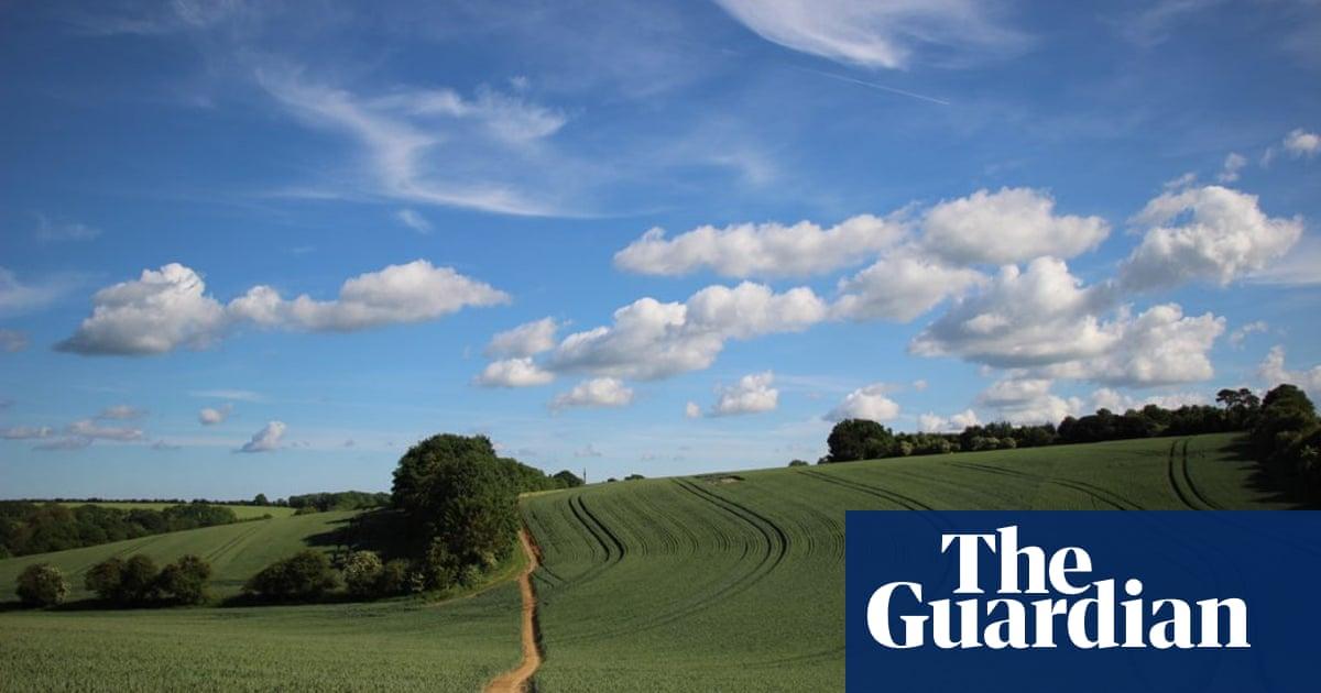 'Massive error': farmers say post-Brexit funding plan risks food scares