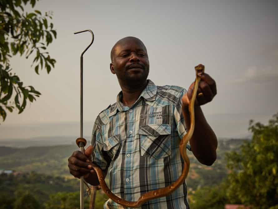 François Nsingi, a technician at the University of Kinshasa's centre for anti-venom research