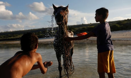 Drought forces Indonesian farmers to learn new skills – in pictures