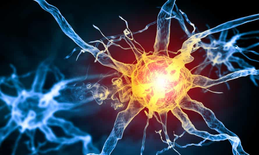 Illustration of a nerve cell in the human body.