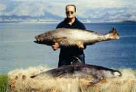 A man holds a totoaba. Below it rests a dead vaquita.