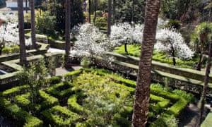 Real Alcázar gardens.